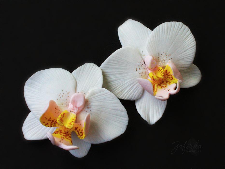все фото орхидеи мастер класс